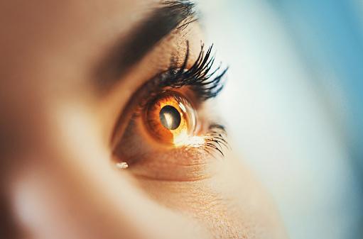 Eyesight exam. 665174414