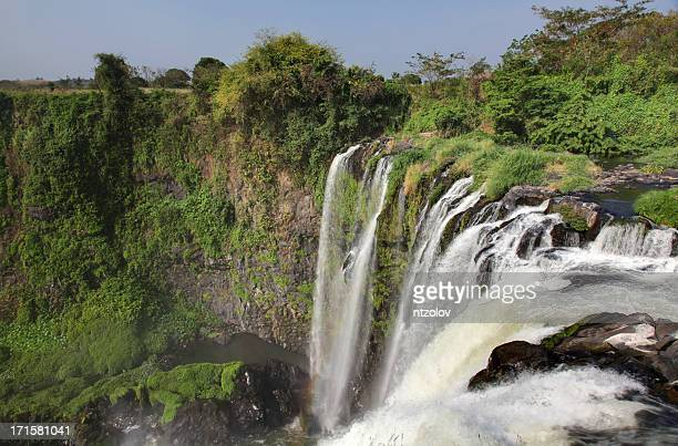 eyipantla falls - veracruz stock pictures, royalty-free photos & images
