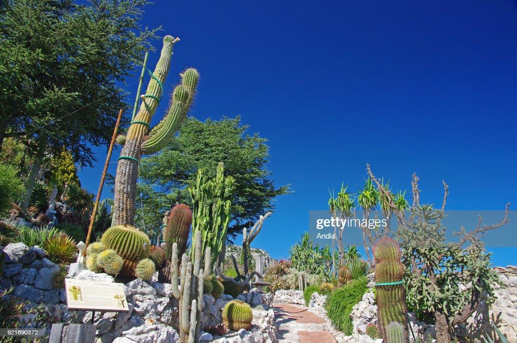 the exotic garden.