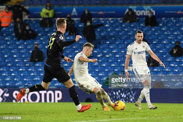 EzgjanAlioski of Leeds United scores their team's fourth goal during the Premier League match between Leeds United and Newcastle United at Elland...