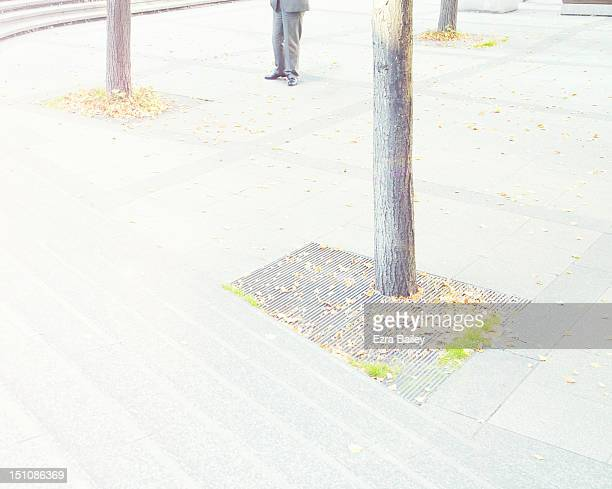 man standing with trees