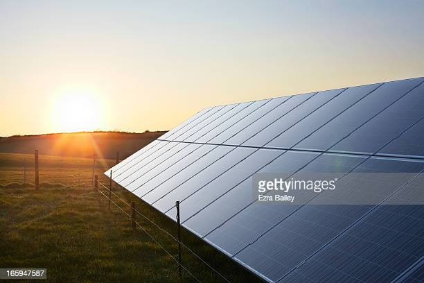 solar panels in a field at sunrise. - sustainable energy stock pictures, royalty-free photos & images