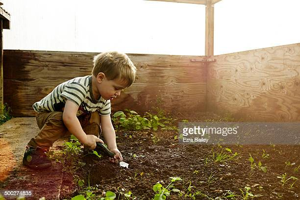 Young boy planing seeds in a greenhouse.