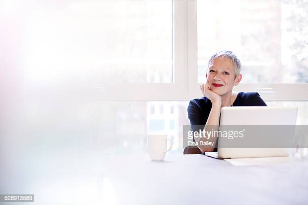 portrait of a mature business woman with a laptop - leanincollection stock pictures, royalty-free photos & images