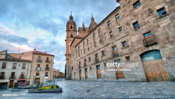 Façade of Casa de las Conchas - Salamanca, Spain