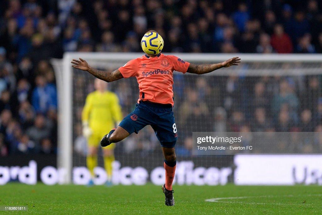 Brighton and Hove Albion v Everton FC - Premier League : News Photo