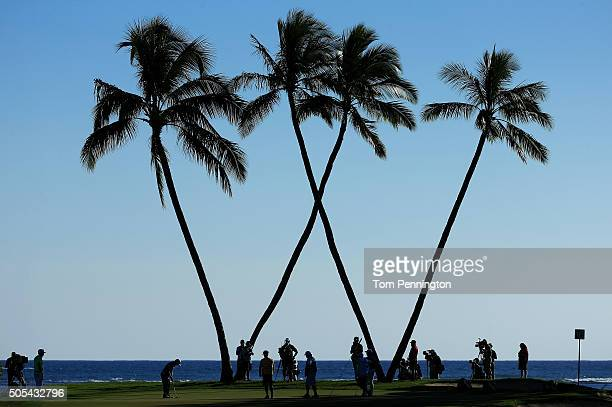 Fabian Gomez of Argentina putts on the 16th green during the final round of the Sony Open In Hawaii at Waialae Country Club on January 17 2016 in...