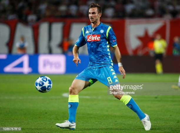 Fabian Ruiz of SSC Napoli in action during the Group C match of the UEFA Champions League between Crvena Zvezda Belgrade and SSC Napoli at Rajko...