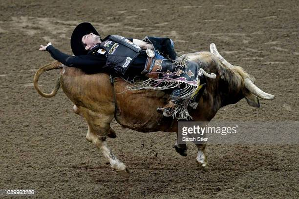 Fabiano Vieira rides Losing My Religion in the 15/15 Bucking Battle during the PBR Unleash the Beast bull riding event at Madison Square Garden on...