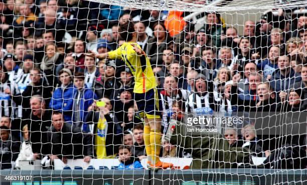 Fabio Borini of Sunderland celebrates after scoring the opening goal during the Barclays Premier League match between Newcastle United and Sunderland...