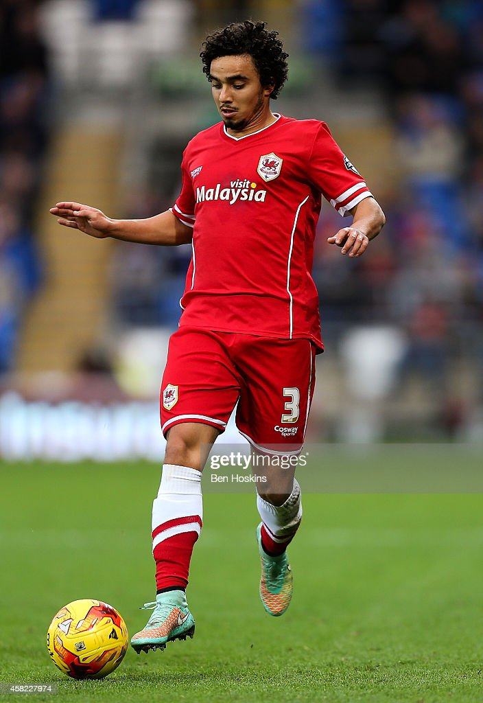 Fabio Da Silva of Cardiff in action during the Sky Bet Championship match between Cardiff City and Leeds United at Cardiff City Stadium on November 1, 2014 in Cardiff, Wales.