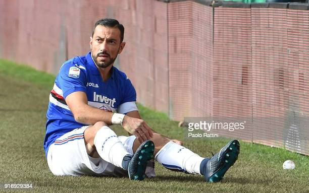 Fabio Quagliarella of Sampdoria during the serie A match between UC Sampdoria and Hellas Verona FC at Stadio Luigi Ferraris on February 11 2018 in...