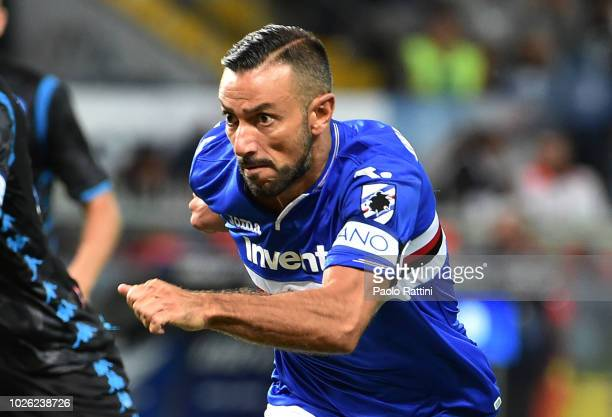Fabio Quagliarella of Sampdoria in action during the serie A match between UC Sampdoria and SSC Napoli at Stadio Luigi Ferraris on September 2 2018...