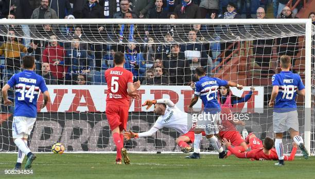 Fabio Quagliarella of Sampdoria scores goal 10 during the serie A match between UC Sampdoria and ACF Fiorentina at Stadio Luigi Ferraris on January...