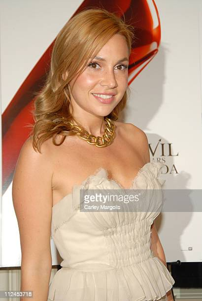 Fabiola Beracasa during The Devil Wears Prada A Dinner and Private Auction Hosted by the St Regis Hotel May 23 2006 at St Regis Hotel in New York...