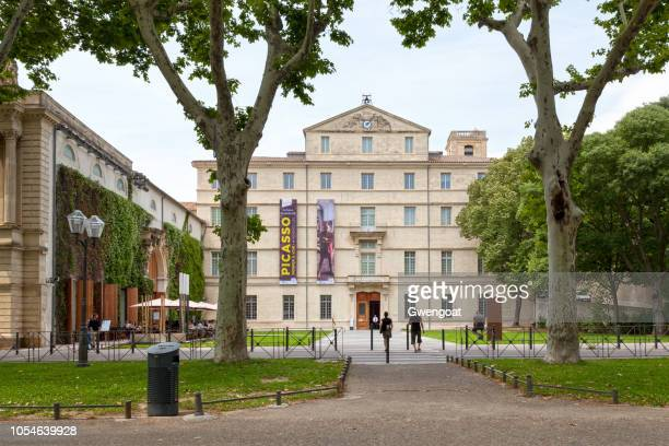 fabre museum in montpellier - montpellier stock pictures, royalty-free photos & images
