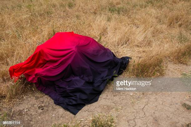 Fabric with Gradation covering Boulder on Dirt Path