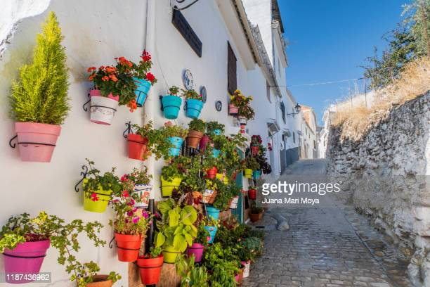 facade full of colorful pots, in a town called alhama de granada.  granada province - granada stock pictures, royalty-free photos & images