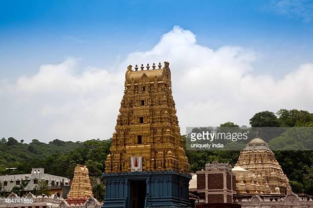 Facade of a temple, Simhachalam Temple, Visakhapatnam, Andhra Pradesh, India