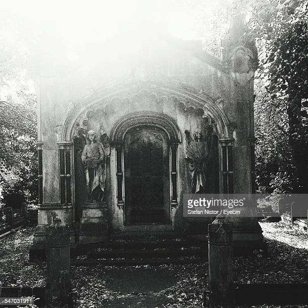 facade of old crypt - crypt stock photos and pictures