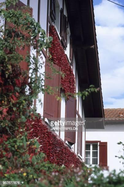 facades maisons basques avec piments suspendus Espelette Pays Basque departement PyreneesAtlantique region Aquitaine France Espelette Pays Basque...