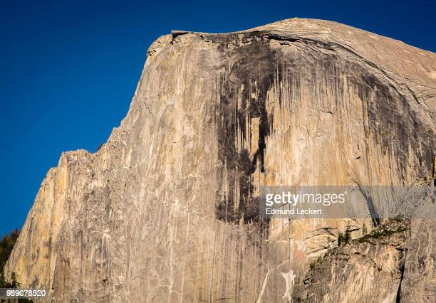 Face of an Icon, Yosemite National Park, California