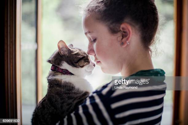 face to face between a cat and a girl - cat family stock pictures, royalty-free photos & images