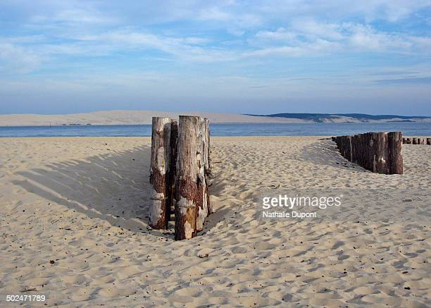Faced with the Pyla dune