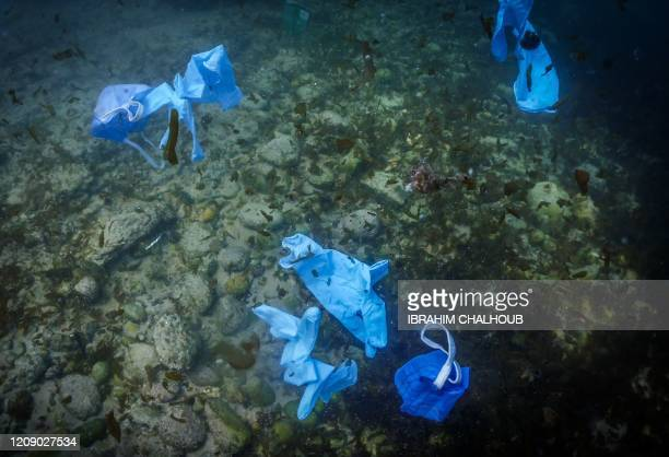 Facemasks and gloves float above the seabed of the Mediterranean, off the coast of the Lebanese city of Batroun, north of the capital Beirut, on...