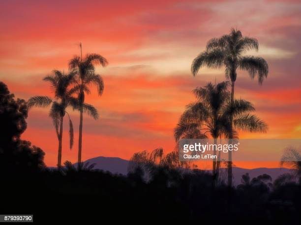 facing east - balboa park stock photos and pictures