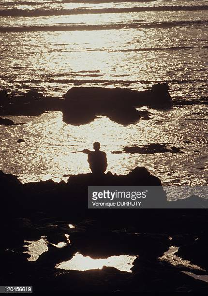 Facing the sea in Essaouira Morocco The chemistry of our emotions