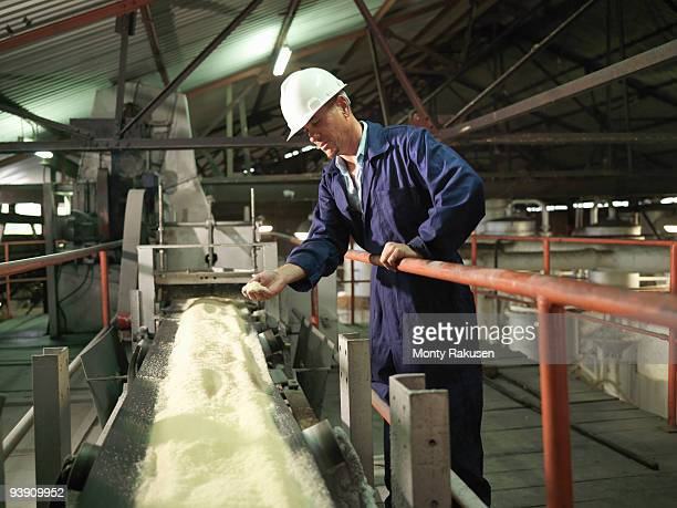 factory worker with processed sugar cane - sugar food stock pictures, royalty-free photos & images