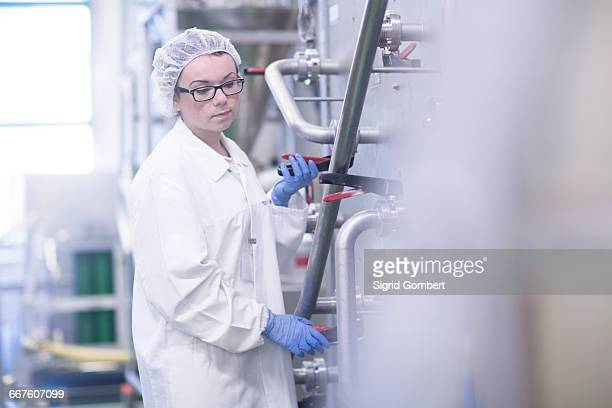 factory worker working in food production factory - sigrid gombert stock-fotos und bilder