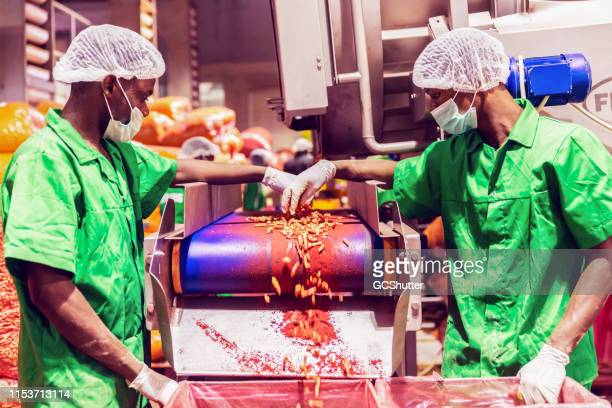 Factory Workers Checking Final Production Quality at a Food Processing Plant