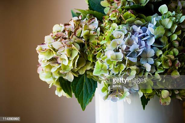 Faded Bouquet