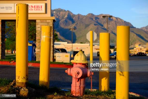 Faded red fire hydrant is surrounded by protective columns at the edge of a parking lot. Mountains appear in the background.