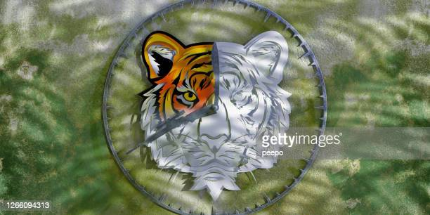 Fading Tiger Clock Showing Time Running Out for Endangered Species