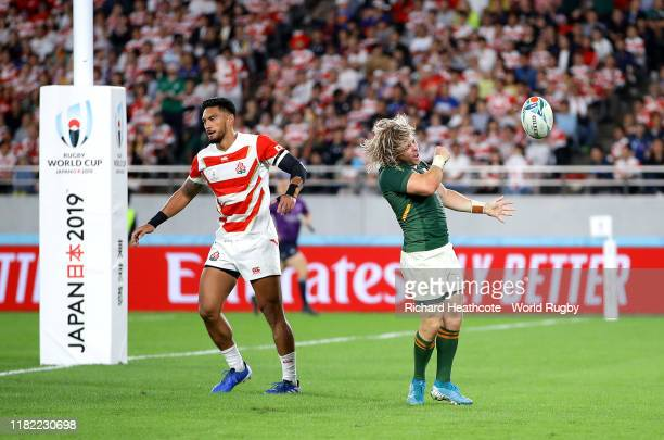 Faf De Klerk of South Africa celebrates scoring his sides second try during the Rugby World Cup 2019 Quarter Final match between Japan and South...