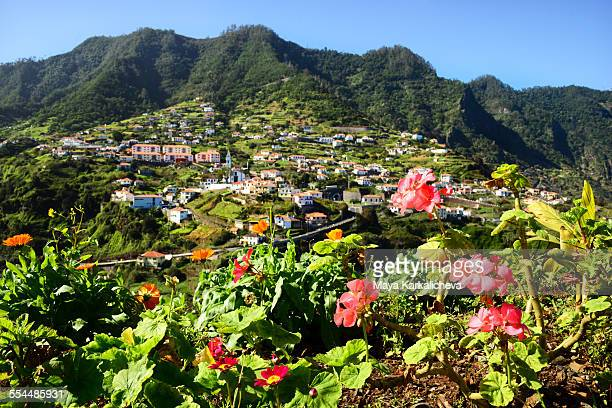 faial, atlantic ocean, madeira island, portugal - lareira stock pictures, royalty-free photos & images