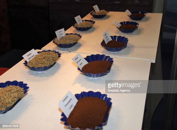 A fair booth is seen during the 15th African Fine Coffee Conference and Exhibition at the Millennium Hall in Addis Ababa Ethiopia on February 15 2017