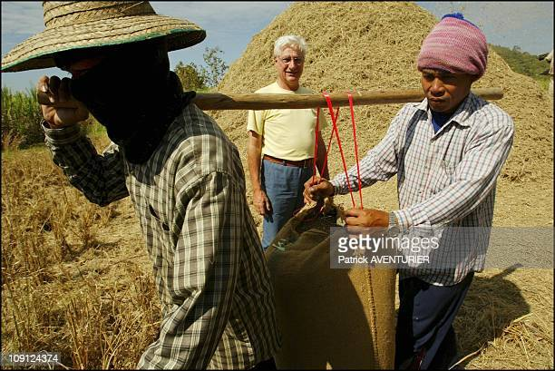 Fair Trade Max Havelaar Rice Harvest In Thailand On November 29 2004 In Thailand Henri Soule Supervising The Rice Harvest In The Ricefields Of Ban...