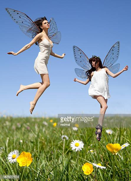 fairies - fairy stock photos and pictures