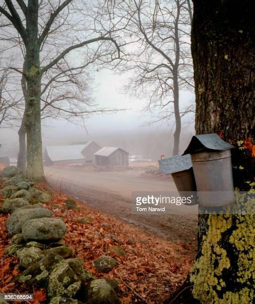 Fairlee, Vermont-3