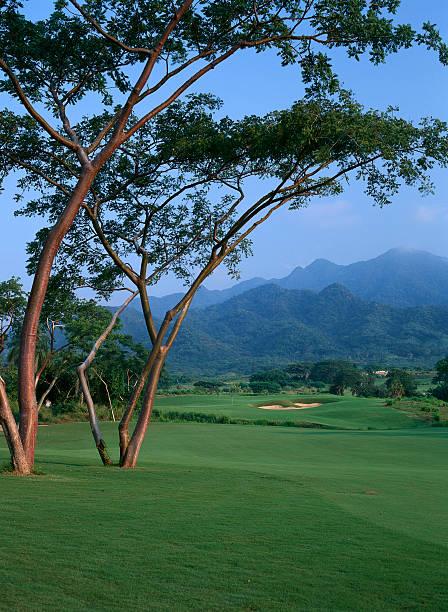 Fairway and Trees of Vista Vallarta Club de Golf
