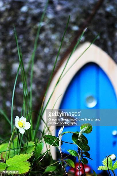 fairy door - gregoria gregoriou crowe fine art and creative photography. bildbanksfoton och bilder