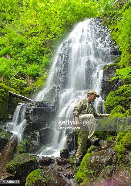 fairy falls, columbia river gorge, oregon, usa; hiker - dan sherwood photography stock pictures, royalty-free photos & images