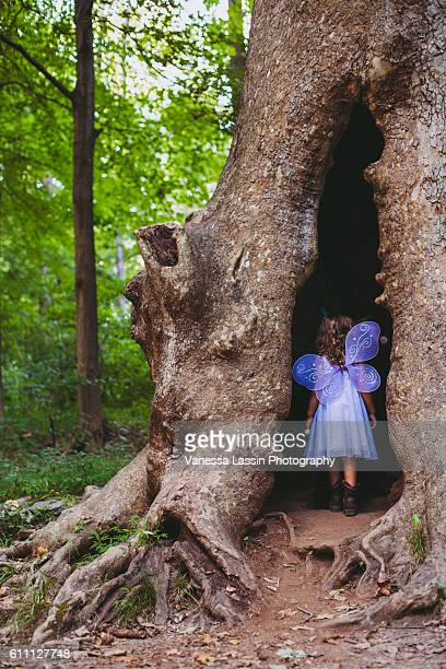 fairy house - vanessa lassin stock pictures, royalty-free photos & images