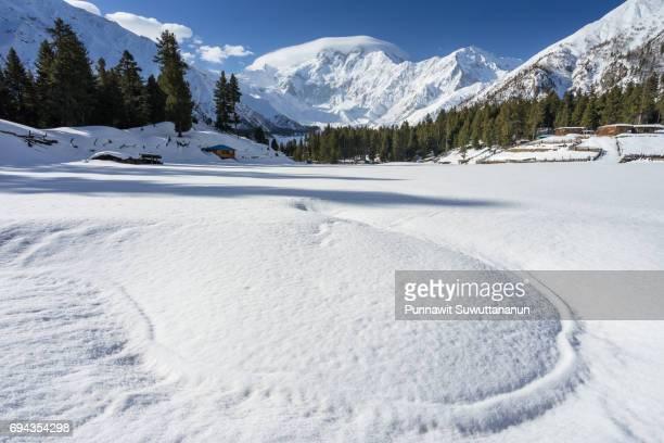 Fairy Meadow in winter with Nangar Parbat mountain massif background, Chilas, Gilgit Baltistan, Pakistan