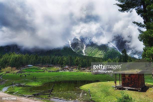 fairy meadows, gilgit baltistan province, pakistan - hunza valley stock pictures, royalty-free photos & images