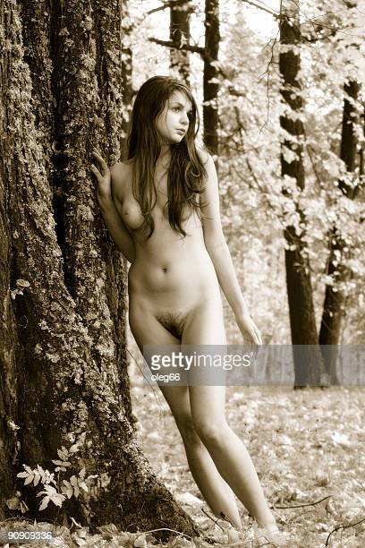 fairy - women dressed undressed stock pictures, royalty-free photos & images